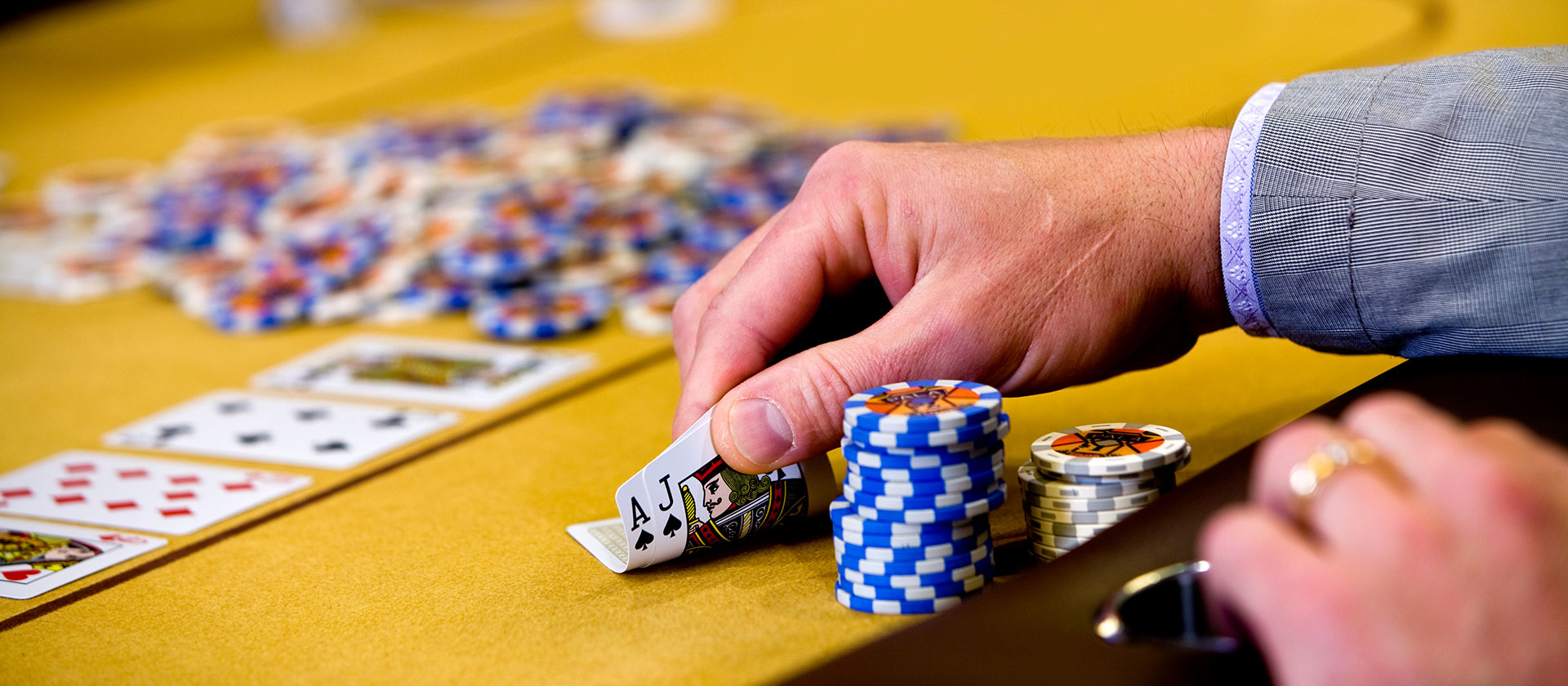 Online Casino Software Program And Advertising Beneath One Roof